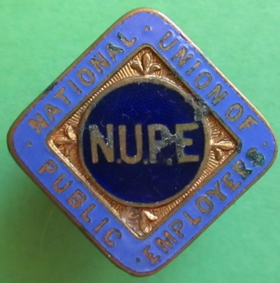 NATIONAL UNION OF PUBLIC EMPLOYEES LAPEL BADGE