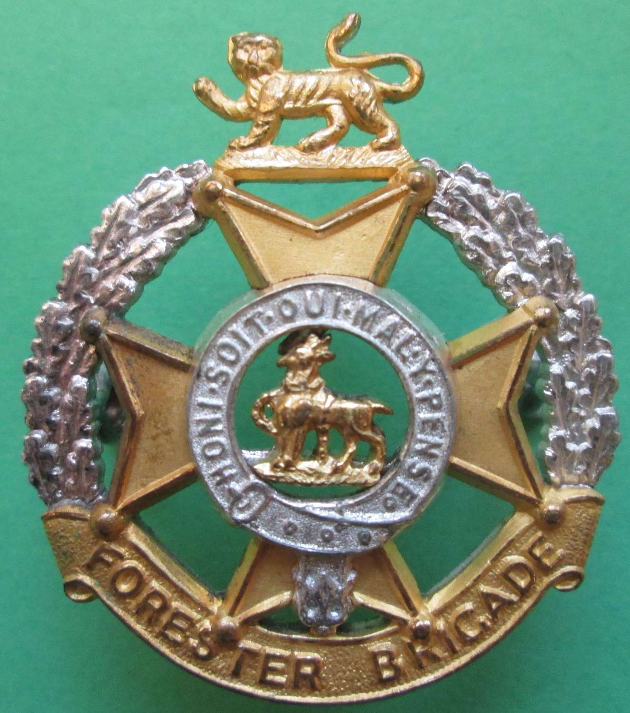 A FORESTER BRIGADE OFFICERS GILT CAP BADGE