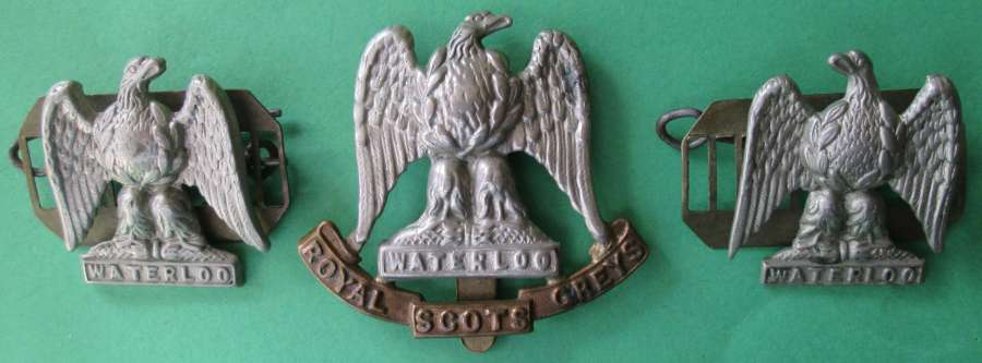 A SET OF ROYAL SCOTS GREYS CAP BADGE AND COLLAR DOGS