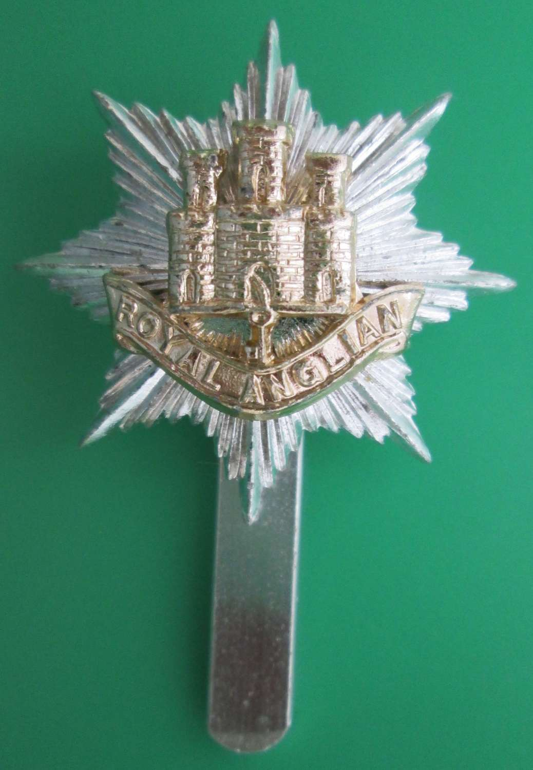 AN ANODISED ROYAL ANGLIAN CAP BADGE