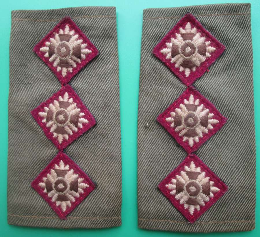 A AIR OF CAPTAINS RANK SLIDES THESE ARE PURPLE BACKED RAMC
