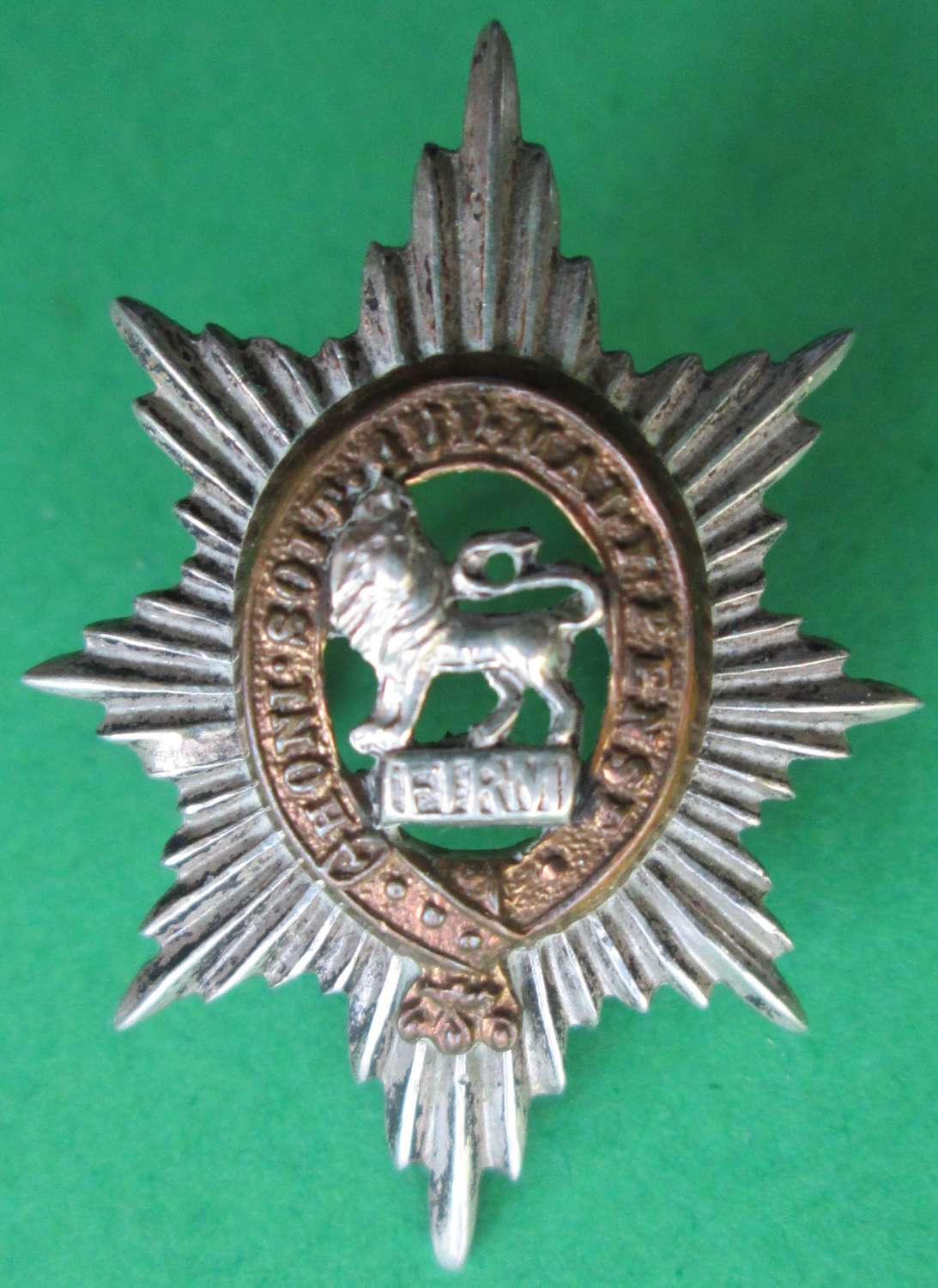 A WORCESTERSHIRE REGIMENT OFFICERS SILVER PLATED COLLAR DOG