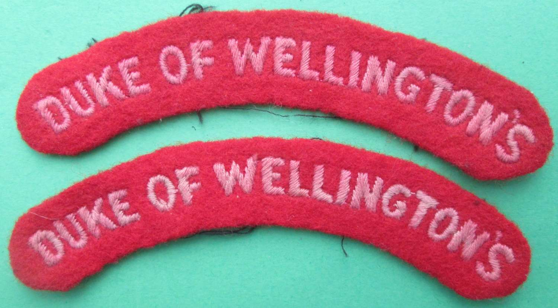 A PAIR OF DUKE OF WELLINGTON SHOULDER TITLES